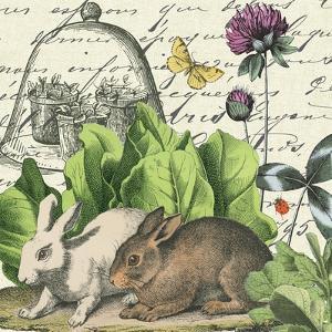Garden Rabbit II by Wild Apple Portfolio