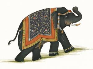 India Elephant I Light Crop by Wild Apple Portfolio