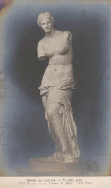 La Venus de Milo by Wild Apple Portfolio