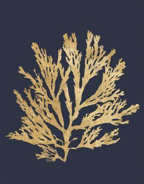 Pacific Sea Mosses I Indigo by Wild Apple Portfolio