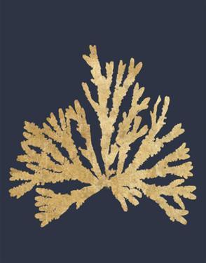 Pacific Sea Mosses IV Indigo by Wild Apple Portfolio