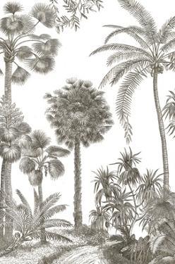 Palm Oasis I by Wild Apple Portfolio