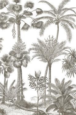 Palm Oasis II by Wild Apple Portfolio
