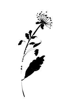 Silhouette Floral III by Wild Apple Portfolio