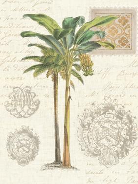 Vintage Palm Study I by Wild Apple Portfolio