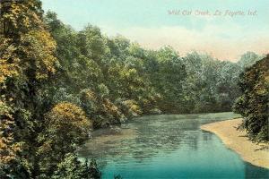 Wild Cat Creek, Lafayette