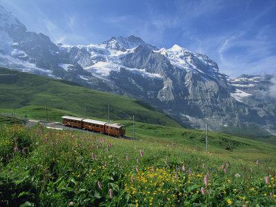 https://imgc.allpostersimages.com/img/posters/wild-flowers-on-the-slopes-beside-the-jungfrau-railway-with-the-jungfrau-beyond-switzerland_u-L-PXUTQ40.jpg?p=0