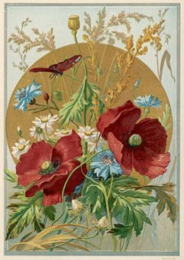 Wild Flowers: Poppies, Daisies and Cornflowers