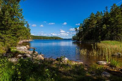 https://imgc.allpostersimages.com/img/posters/wild-landscape-in-the-lake-stora-le-dalsland-goetaland-sweden_u-L-Q1F2OQU0.jpg?artPerspective=n
