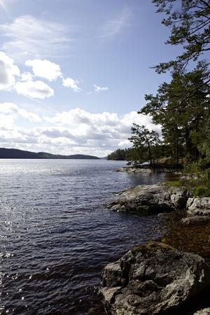 https://imgc.allpostersimages.com/img/posters/wild-landscape-on-stora-le-lake-dalsland-goetaland-sweden_u-L-Q1EXT1V0.jpg?artPerspective=n
