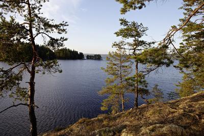 https://imgc.allpostersimages.com/img/posters/wild-landscape-stora-le-lake-dalsland-goetaland-sweden_u-L-Q1EYIZD0.jpg?artPerspective=n