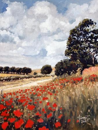 https://imgc.allpostersimages.com/img/posters/wild-poppies-hertfordshire-2010_u-L-PJGRGN0.jpg?p=0