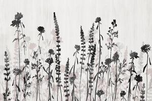 Wildflower Garden by Isabelle Z