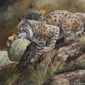 Wildlife by Wildlife Wildlife