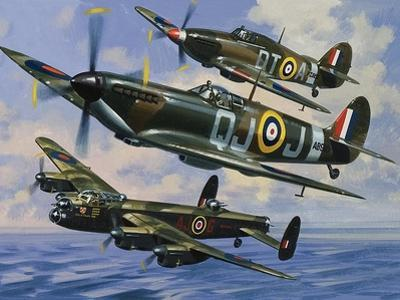 Spitfires by Wilf Hardy