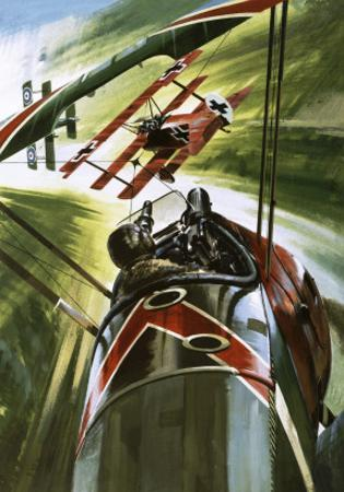 The Fokker Dr. 1 -- the Red Baron by Wilf Hardy