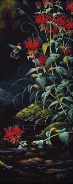 Ruby Throated Hummingbird by Wilhelm Goebel