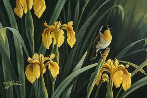 Yellow Flags and Yellowthroat by Wilhelm Goebel