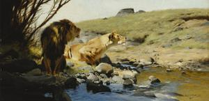 A Lion and Lioness at a Stream by Wilhelm Kuhnert