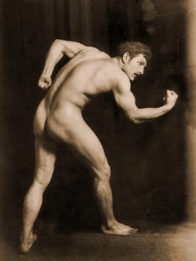 Study of a Male Nude, C.1900 by Wilhelm Von Gloeden