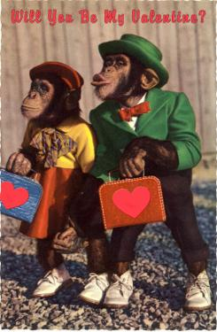 Will You Be My Valentine? Chimps with Heart Suitcases