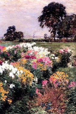A Display of Flowers, 1903 by Willard Leroy Metcalf