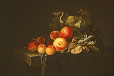 Still Life of Plums, Peaches, Almonds and Grapes on a Draped Ledge, 1650