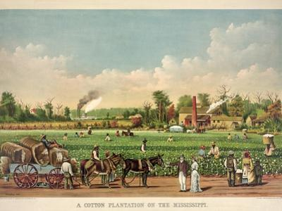 A Cotton Plantation on the Mississippi, Pub. 1884 by William Aiken Walker