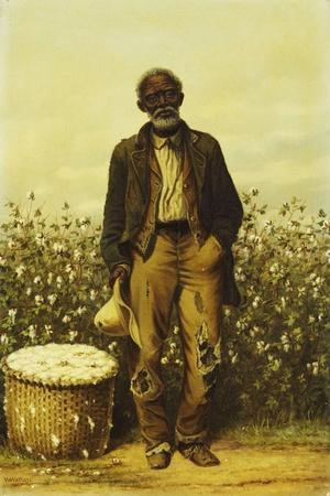 The Old Cotton Picker