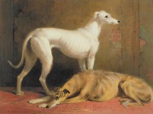 Deerhounds in an Interior by William Barraud