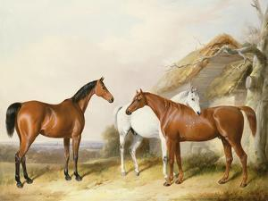 Outside the Stable, 1845 by William Barraud