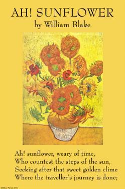 Ah! Sunflower by William Blake
