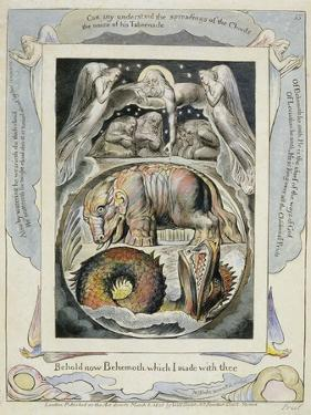 Behemoth and Leviathan from the Book of Job (Pl.15), C.1793 (Hand Tinted Line) by William Blake