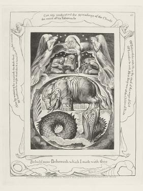 Behold Now Behemoth Which I Made with Thee, 1825 by William Blake