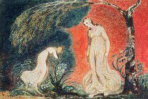 Book of Thel; the Lily Bowing before Thel, before Going Off 'to Mind Her Numerous Charge Among… by William Blake
