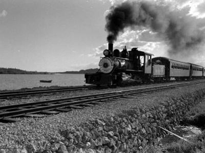 Hawaiian Essay, Train