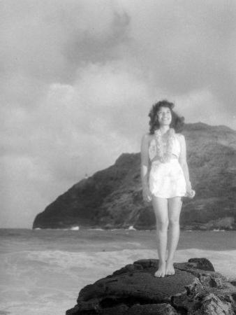 Hawaiian Essay