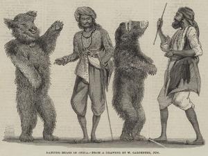 Dancing Bears in India by William Carpenter