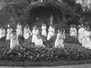 Graduating Class of Girls from the Roman Catholic Orphan Asylum in the Flower Garden by William Davis Hassler