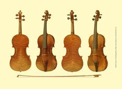 Antique Violins I