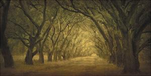 Evergreen, New Alley, Right Side by William Guion