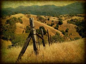 Weathered Ranch Fence by William Guion