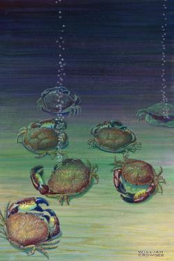 A View of Mud Crabs by William H. Crowder