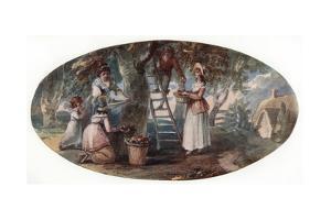 Gathering Fruit, Late 18th Century by William Hamilton