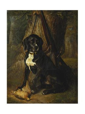A Gun Dog with a Woodcock by William Hammer