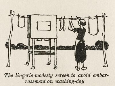 Lingerie Modesty Screen