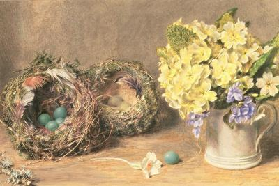 Spring Flowers and Birds' Nests, C.1830
