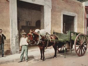 A Mule Cart in Havana Led by a Vendor by William Henry Jackson