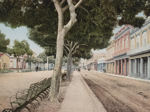Paseo Del Prado, Havana' Steet of the Meadow by William Henry Jackson