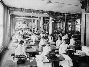 Typewriting Department, National Cash Register, Dayton, Ohio, 1902 by William Henry Jackson